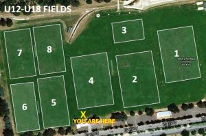 MFC U12-U18 Fields