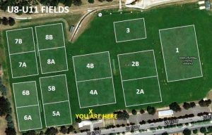 MFC U8-U11 Fields